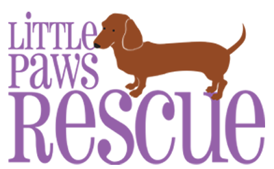 Little Paws Dachshund Rescue Logo