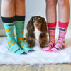 """NEW"" American Doxie X Sock Doggo Doxie Socks"