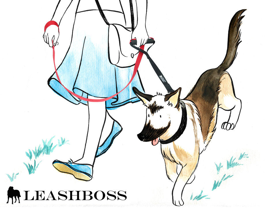 Difference Between Leashboss Original and Leashboss Lite
