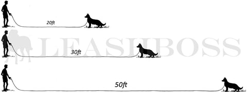 Long leash comparison chart