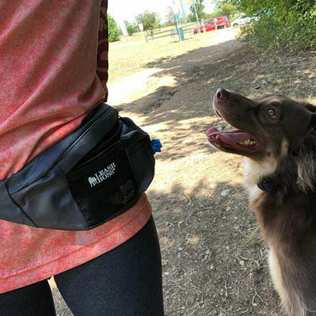 dog walker with PackUp pouch