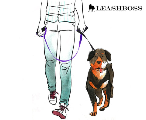 dual handle dog leash by leashboss