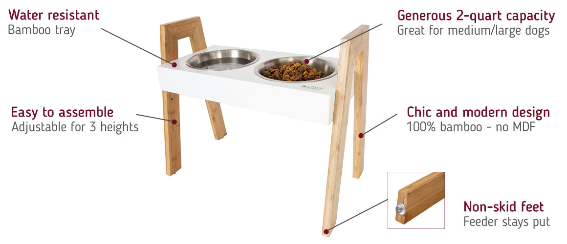adjustable height dog feeder modern
