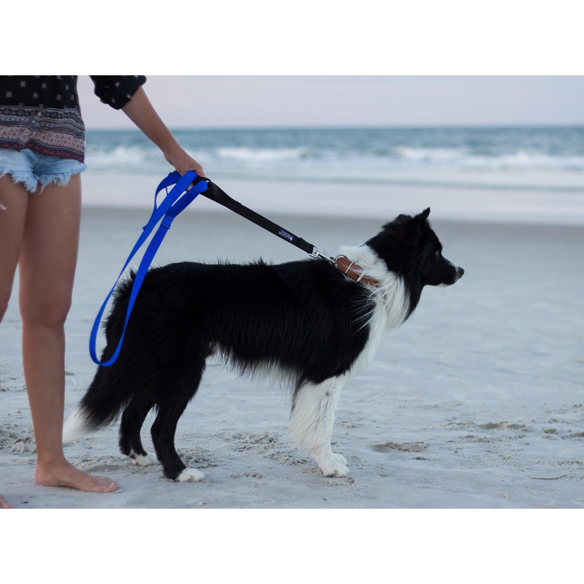Leashboss Lite Double Handle Leash For Pulling Dogs
