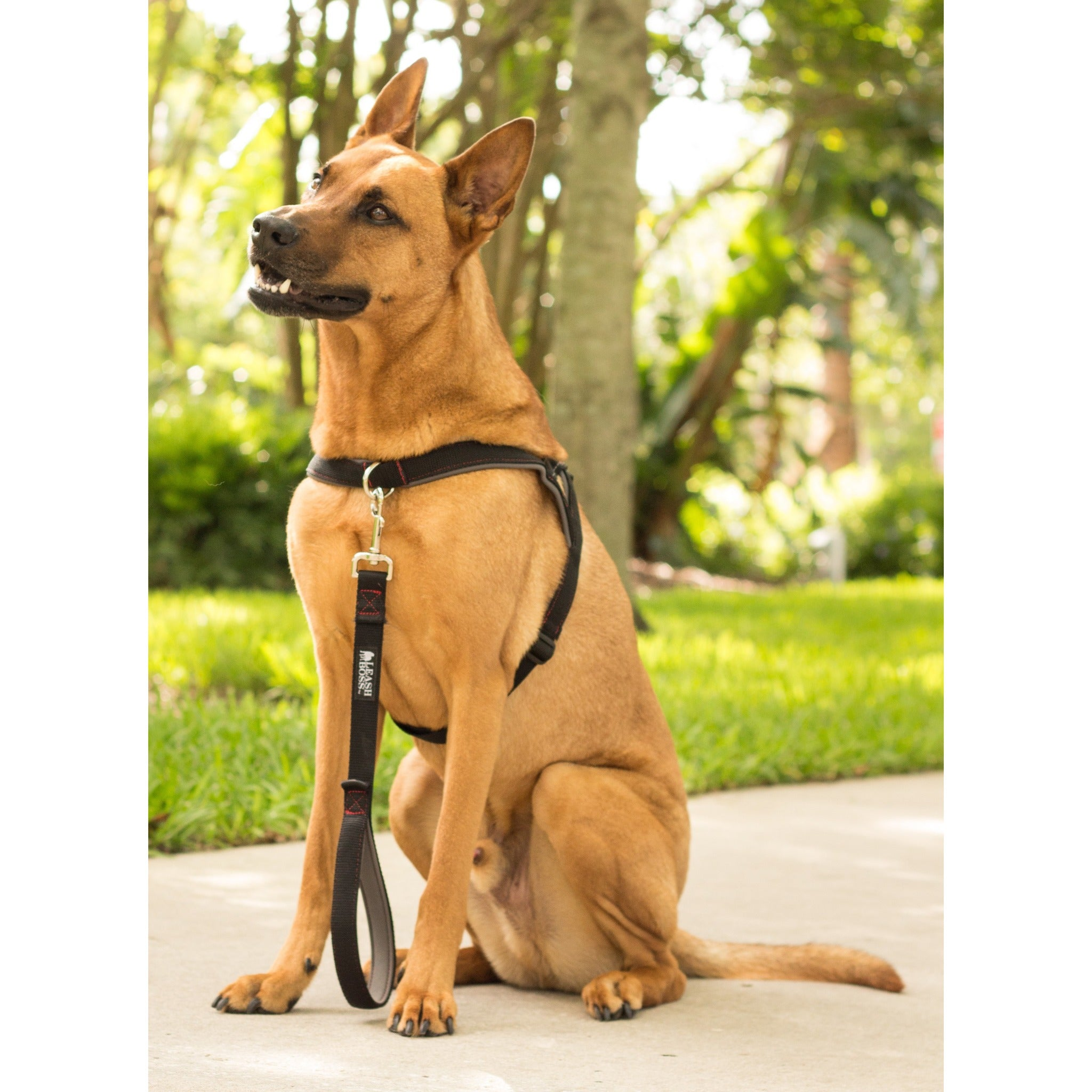 leash_boss_large_harness 4_copy?v=1527083406 no pull dog harness front and rear clip reflective padded for