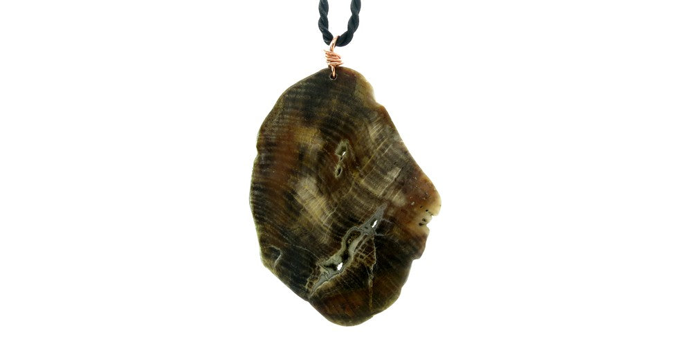 Petrified Wood Stand Necklace