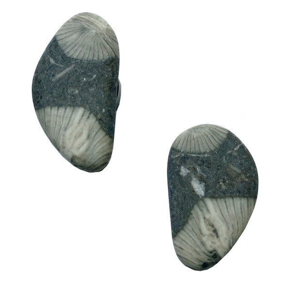 Fossil Magnet 01 Gray Coral Stone Set - I Dig Crystals