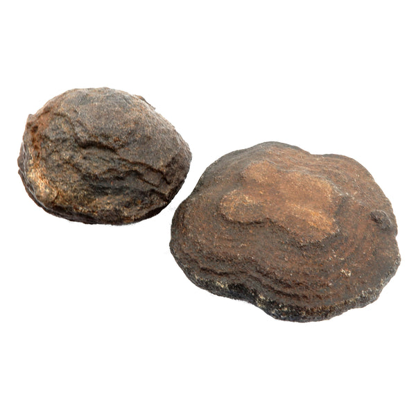 Moqui Balls 04 - Set Brown Shaman Stone Male Female (2.3-3.2 Inches)