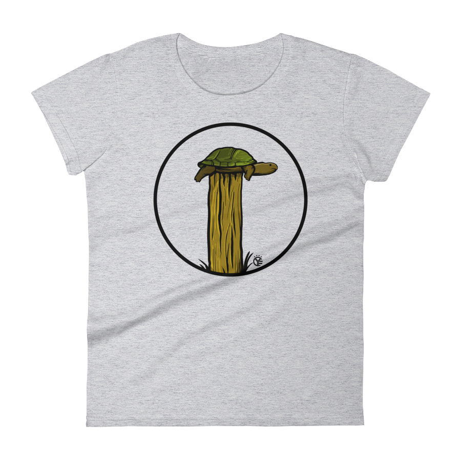 Turtle on a Fence Post Women's T-Shirt
