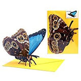 3D Animal Card - Butterfly