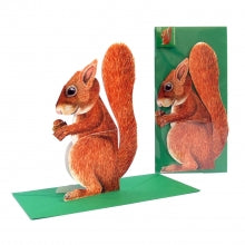 3D Animal Card - Squirrel