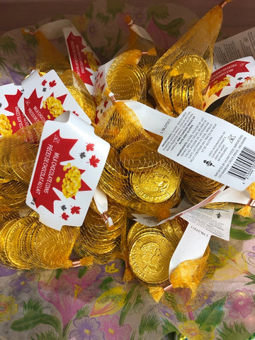 Milk Chocolate Coins in Net