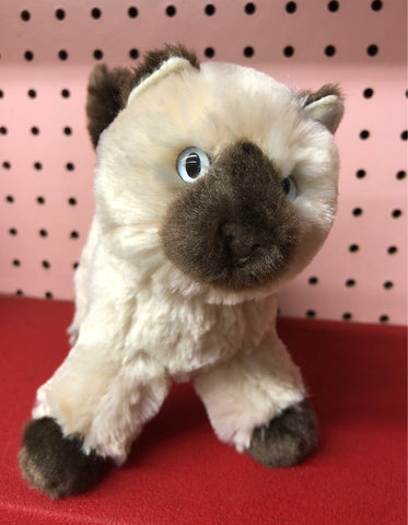 Plush Himalayan Kitten