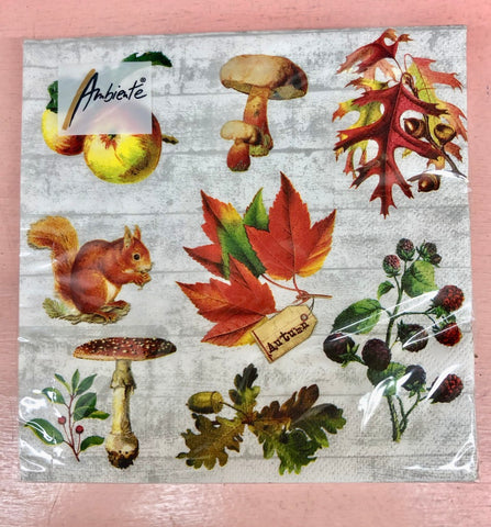 Autumn Medley Lunch Napkins
