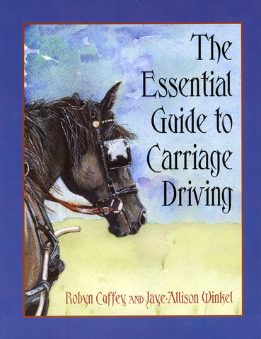 Essential Guide to Carriage Driving