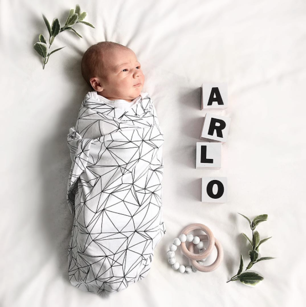 Meet Arlo + Moving Update