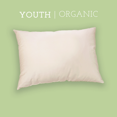 "Organic Youth Pillow (16"" X 22"")"