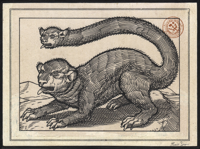 Ravi Zupa - Beastiary #2 Drawing
