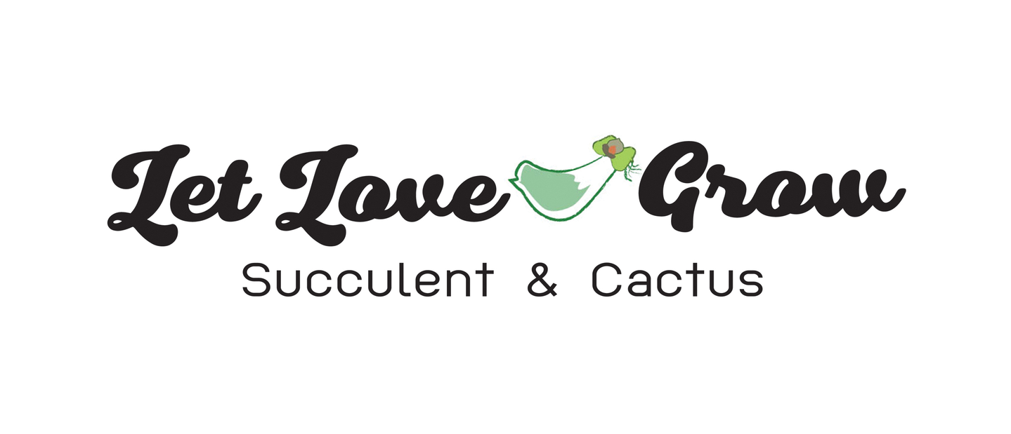 LET LOVE GROW (Succulent & Cactus)