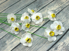 White and yellow Daffodil ceramic flowers - Ceramics By Orly  - 4