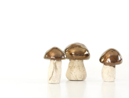 Gold mushrooms - Ceramics By Orly  - 1