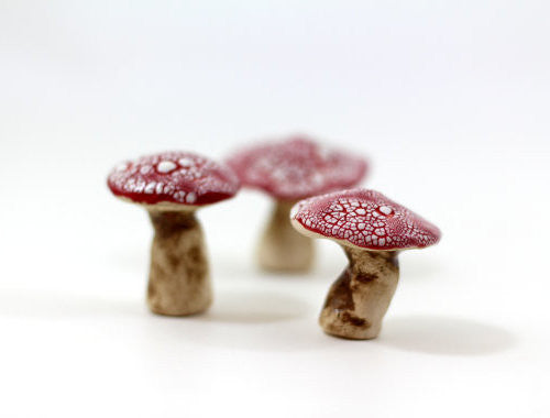 Miniature mushrooms in red and white