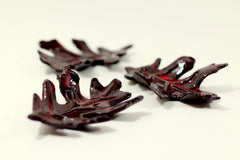 Brown and Red ceramic leaves - Ceramics By Orly  - 2