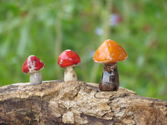 Tiny rustic ceramic mushrooms garden in variety of colors sizes and shapes - Ceramics By Orly  - 5