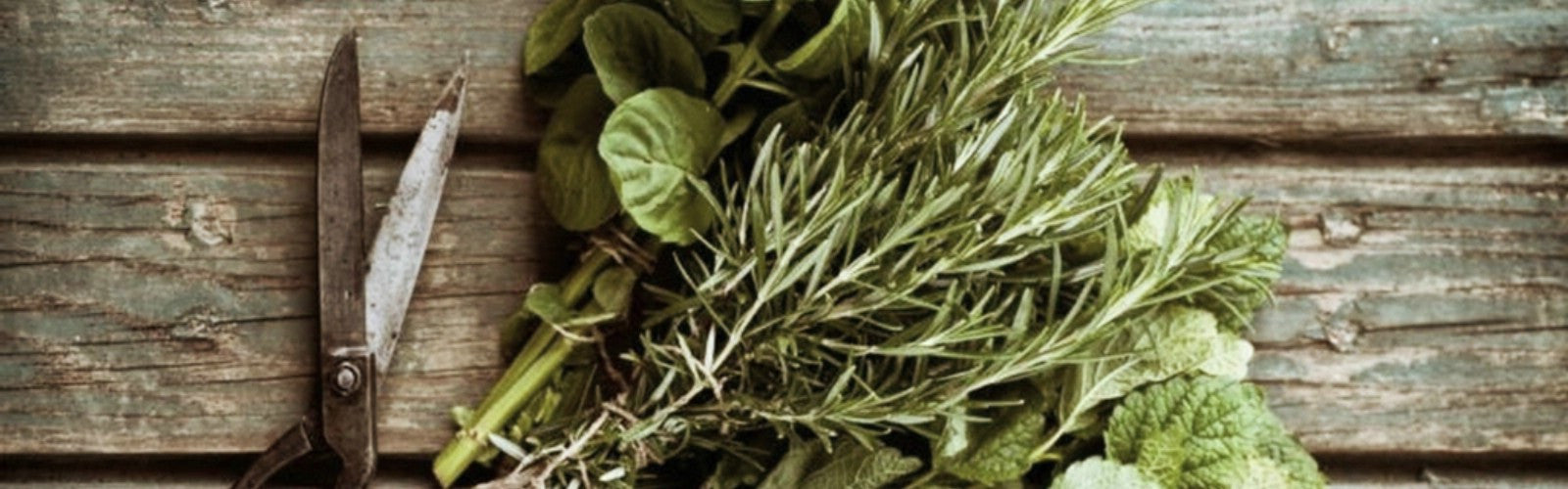 Teas for High Blood Pressure