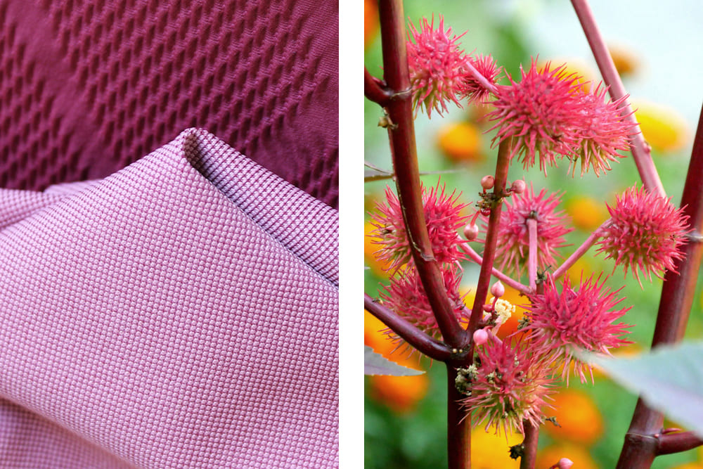 100% nature: This is how sustainable fabric made from castor oil is