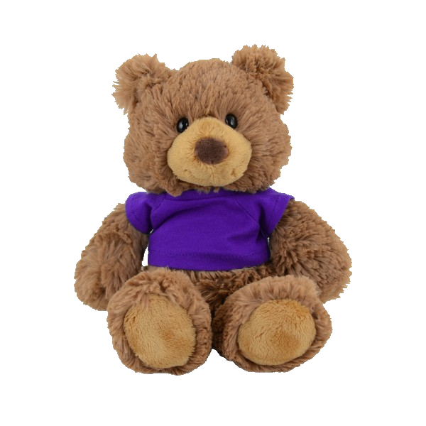 VPLS009 Ziggy Plush Bear with T-Shirt