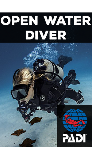 Scuba Diving Miami Beach – Tarpoon Dive Center