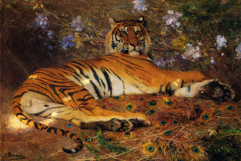 Gustave Surand - Resting Tiger