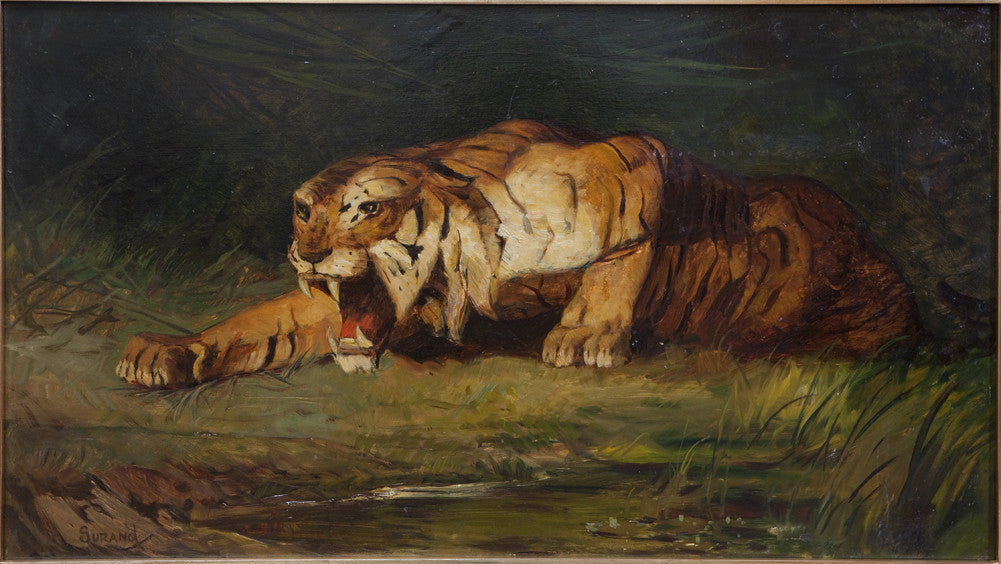 Gustave Surand - Tiger