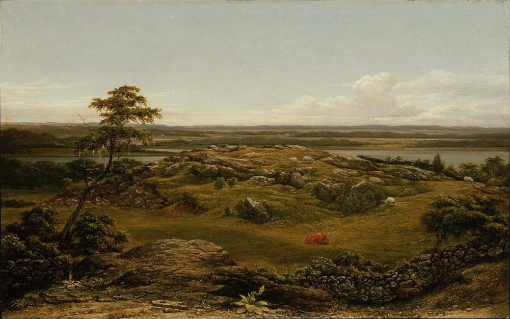 Martin Johnson Heade - Rocks in New England