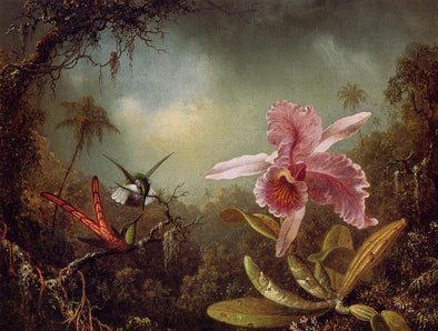Martin Johnson Heade - Orchid with Two Hummingbirds