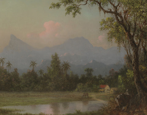 Martin Johnson Heade - South American Scene with a Cabin