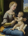 Raphael - The Madonna of the Pinks