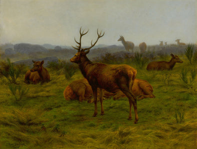 Rosa Bonheur - The Monarch of the Herd
