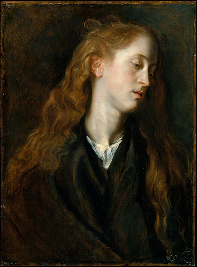 Sir Anthony van Dyck - Study Head of a Young Woman