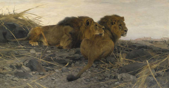 Wilhelm Kuhnert - Lions at Watch