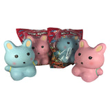 **FINAL SALE** ToysBoxShop SCENTED and Big Wow Bunny!