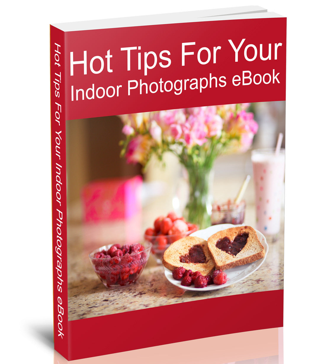 Hot Tips For Indoor Photographs eBook