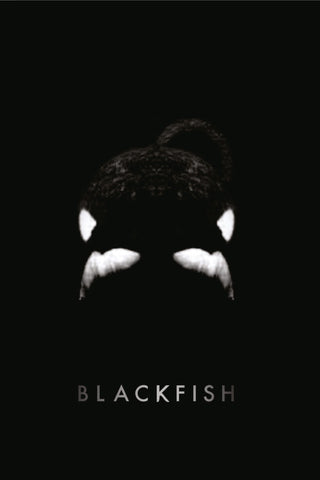 Blackfish - Book a Screening