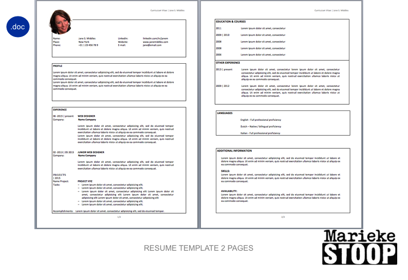 Resume Template Modern Box