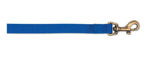 "ANCOL NYLON LEAD BLUE 1"" X 25MM"