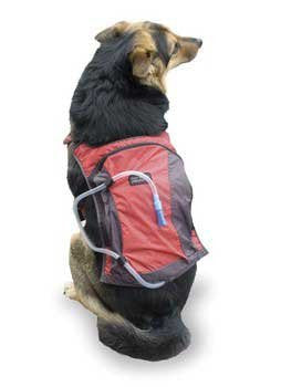 Outward Hound H2O Hydration Pack Large