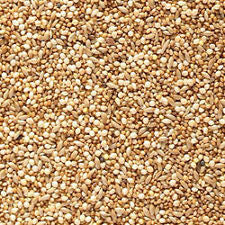 FOREIGN FINCH SEED 1KG