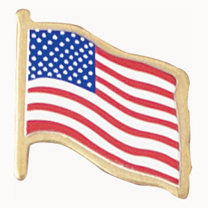 Flag Pins in Politics by Republican Coffee