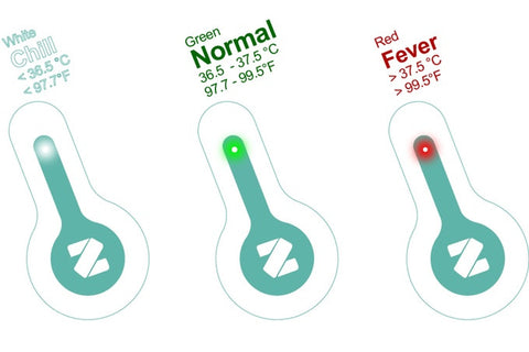 Zeraph Flo smart thermometer